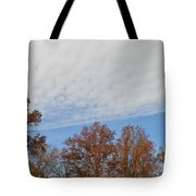 Nature's Brush Strokes Tote Bag