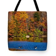 Natures Colorful Autumn Tote Bag