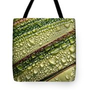 Nature's Colours Tote Bag