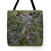 Natures Crystals Tote Bag
