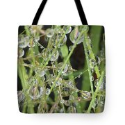 Natures Diamonds Tote Bag