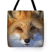 Nature's Eyes Tote Bag