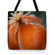 Natures Frost Tote Bag