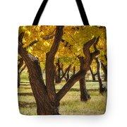 Natures Gold 2 Tote Bag