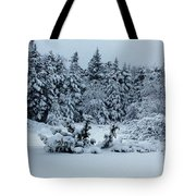 Natures Handywork - Snowstorm - Snow - Trees Tote Bag