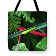 Nature's Highway Tote Bag