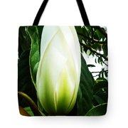 Nature's Light Bulb Tote Bag