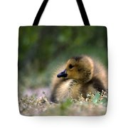 Nature's Lil Wonder Tote Bag by Skip Willits
