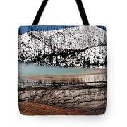Nature's Mosaic I Tote Bag