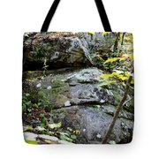 Nature's Mossy Boulders Tote Bag