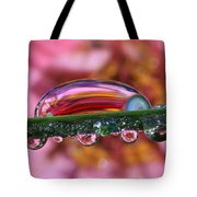 Nature's Ornaments Tote Bag