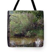 Nature's Pond Tote Bag