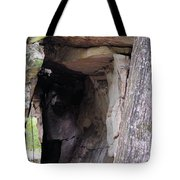 Nature's Sandstone Canopy Tote Bag