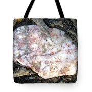 Nature's Simple Arrangement Tote Bag