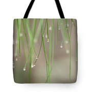 Nature's Soft Reflections Tote Bag