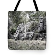 Nature's Statues  Tote Bag