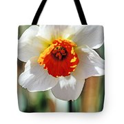 Nature's Sun Tote Bag
