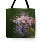 Natures Treasures Tote Bag