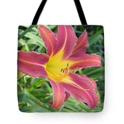 Natures Way Of Blending Color Tote Bag