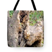 Nature's Wood Abstract Tote Bag