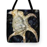 Nautical Tropical Seashell Tote Bag