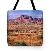 Navajo Nation Series 2 Tote Bag