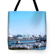 Navy Pier Chicago Il Looking Northeast Tote Bag