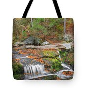 Near And Far Tote Bag by Bill Wakeley