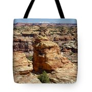 Near And Far Tote Bag