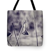 Near The End Tote Bag