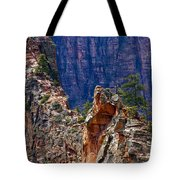 Near The Top Tote Bag