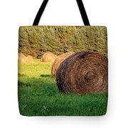 Nearing The Golden Hour 3d21653 Tote Bag