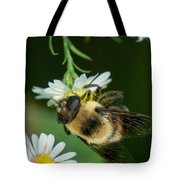 Nectar Collecting Drone Fly  Tote Bag