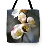 Nectar Hunting In Spring 2013 Tote Bag
