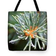 Needle Tips Tote Bag