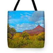 Needle-topped Butte From Highway 211 Going Into Needles District Of Canyonlands National Park-utah  Tote Bag