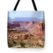 Needles Grand Canyon Tote Bag by Adam Jewell