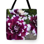 Neighbors Garden Treasures Tote Bag