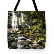 Nelson Falls Tasmania Tote Bag
