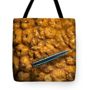 Neon Goby Tote Bag