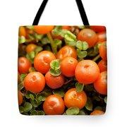Nertera Granadensis Tote Bag
