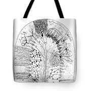 Nerve Cells, 1894 Tote Bag by Granger