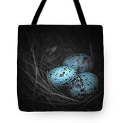 Nest Of 3  Tote Bag