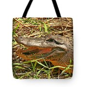 Nesting Alligator Tote Bag