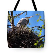Nesting Great Blue Heron Tote Bag
