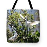 Nesting Great Egrets Tote Bag