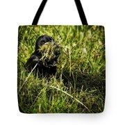 Nesting Material Tote Bag