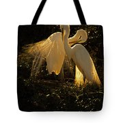 Nesting Pair Of Snowy Egrets Tote Bag