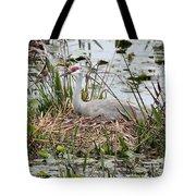 Nesting Sandhill Crane Tote Bag