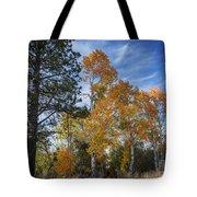 Nevada Fall Colors Tote Bag